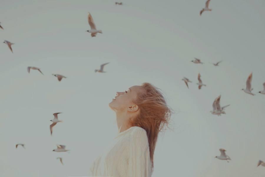 photo beautiful-birds-freedom-girl-inspiration-Favim_zps936769ae.jpg