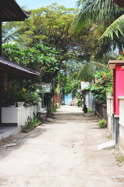 REJSEGUIDE: GILI ISLANDS 7