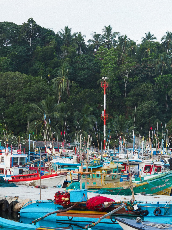Rejseguide til Sri Lanka