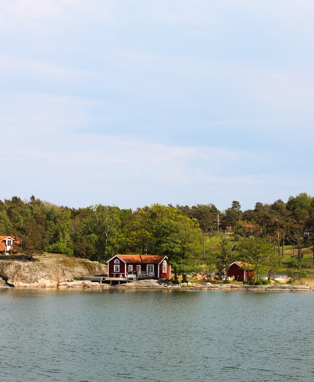 PÅ EVENTYR MED FJÄLLRÄVEN - FROM CITY TO NATURE 19