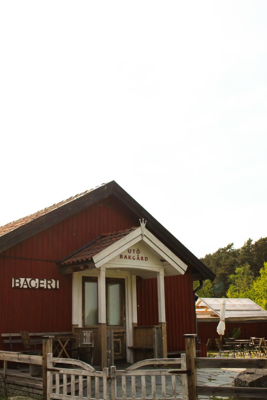 PÅ EVENTYR MED FJÄLLRÄVEN - FROM CITY TO NATURE 17