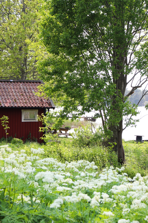 PÅ EVENTYR MED FJÄLLRÄVEN - FROM CITY TO NATURE 23