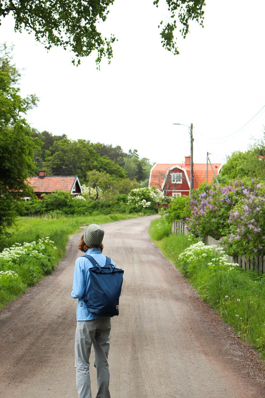 PÅ EVENTYR MED FJÄLLRÄVEN - FROM CITY TO NATURE 1