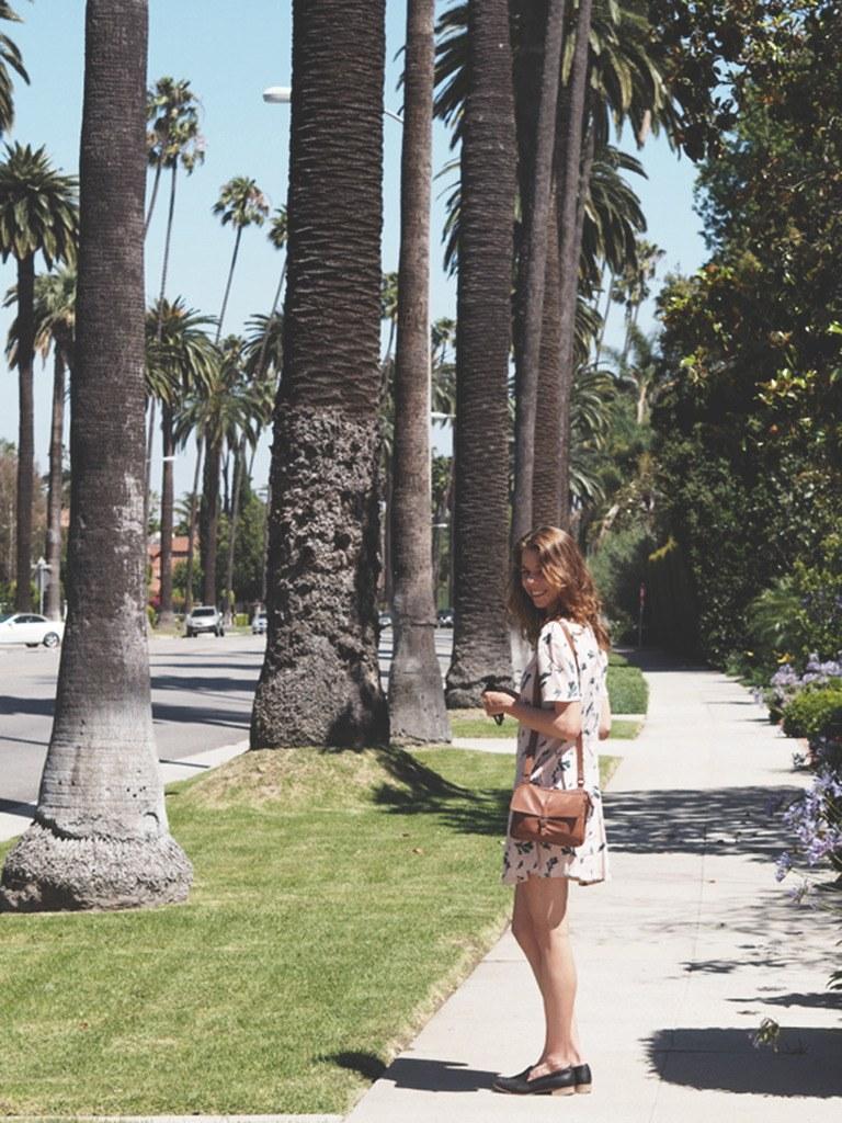 LOS ANGELES & ET LILLE REJSETIP 1