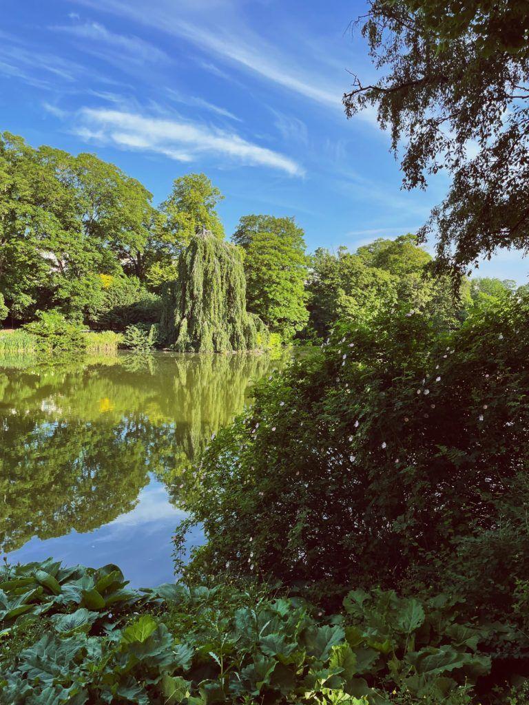 De bedste grønne områder i København 11