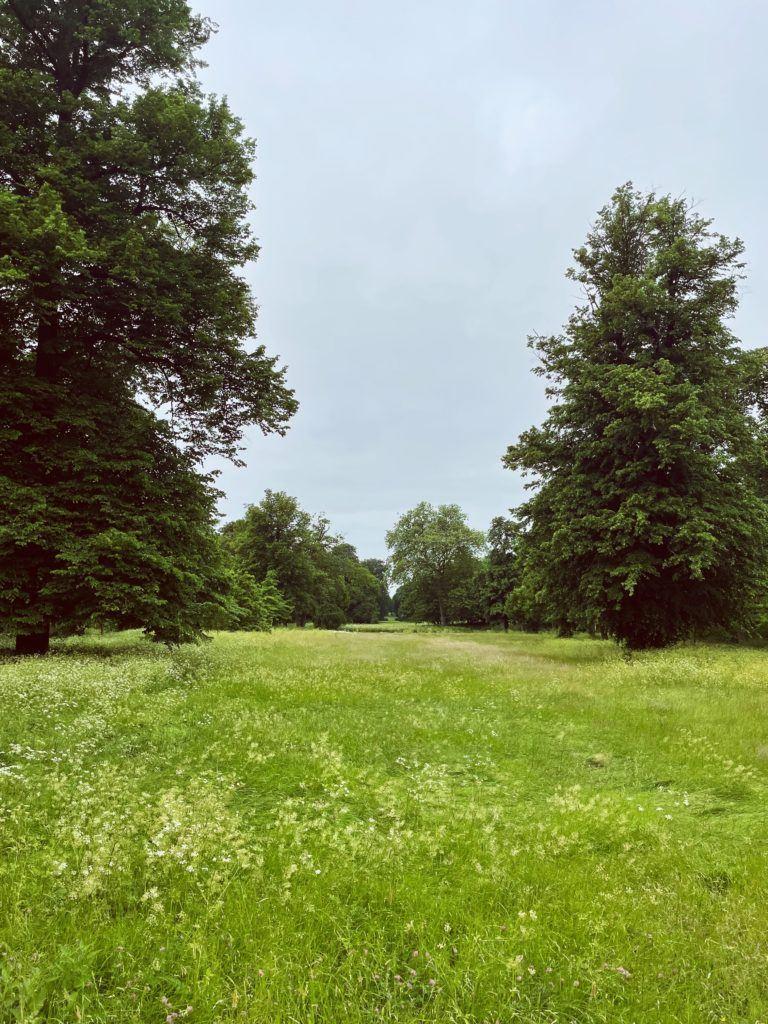 De bedste grønne områder i København 13